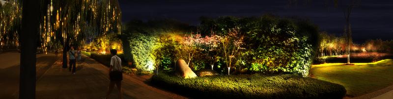 思迪恩公司在公园绿地上植物亮化照明规划控制导则-1