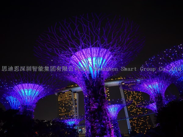 亮化工程设计公司思迪恩明晰城市照明框架构筑观景点