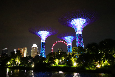 公园园林照明亮化